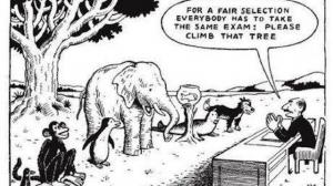 Att klättra i träd