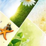 Bakgrundsbilder: Sommar [960×800]